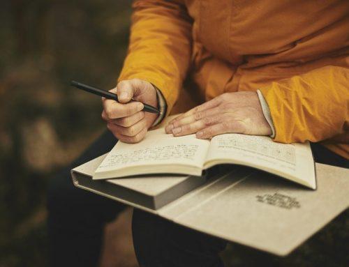 Wat zijn de dagboeken in een boekhouding?